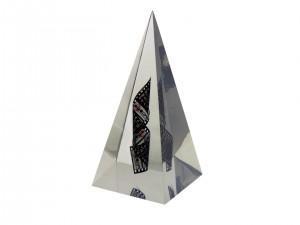 Atom Award