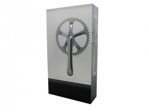 Cycling Award